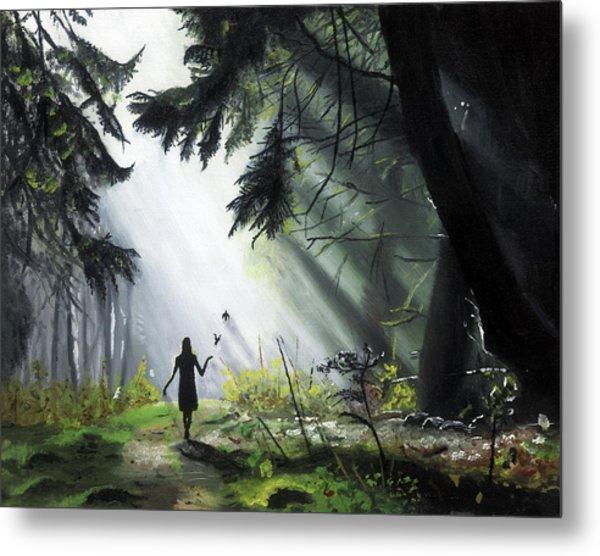 A Walk In The Woods Metal Print by Chris Wiese