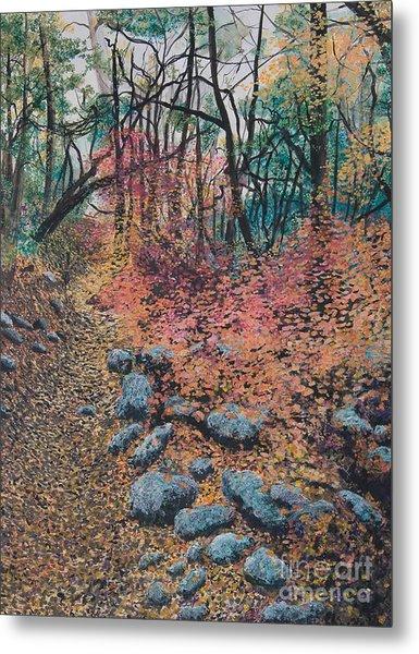 A Walk In The Woods Metal Print by Lucinda  Hansen