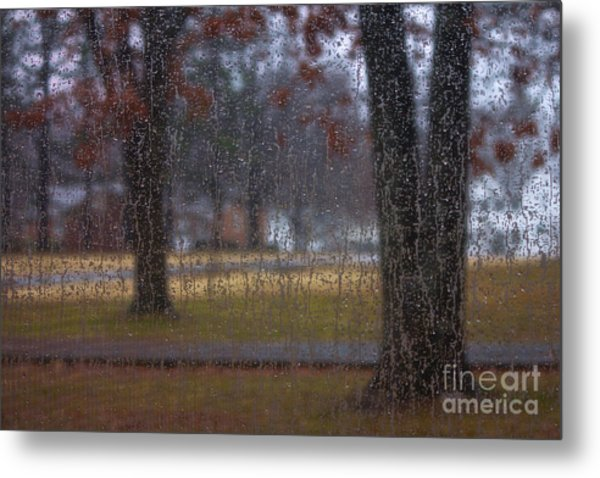 A Watery View Metal Print