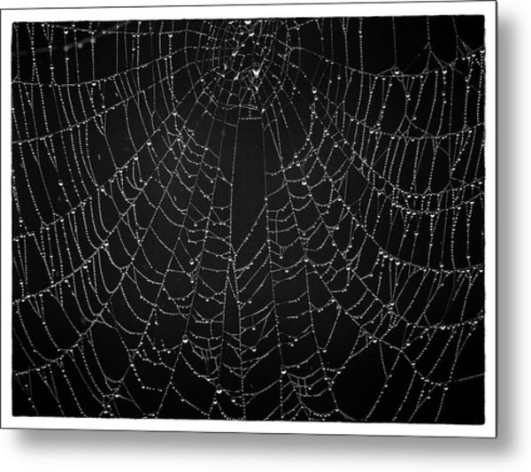 A Web Of Silver Pearls Metal Print