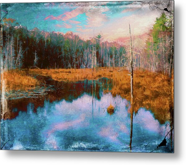 A Wilderness Marsh Metal Print