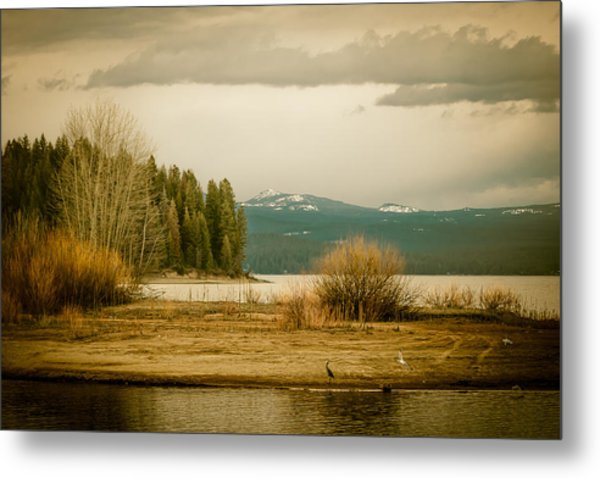 A Winter's Idyll Metal Print