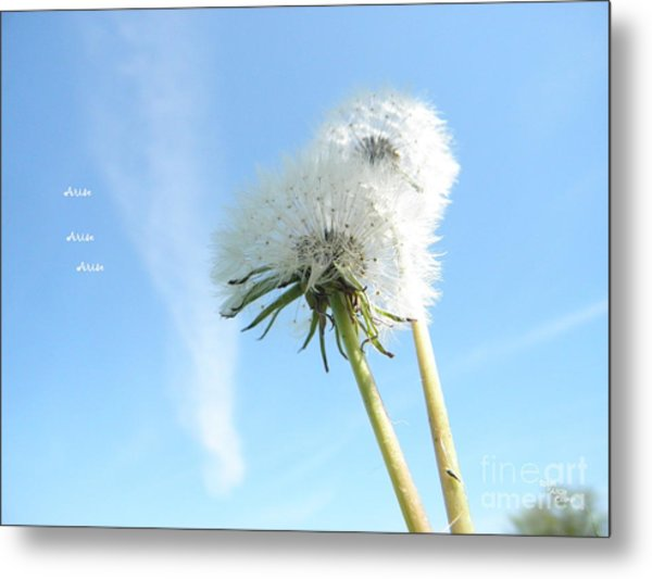 A Wish Blown Off To The Maker Metal Print
