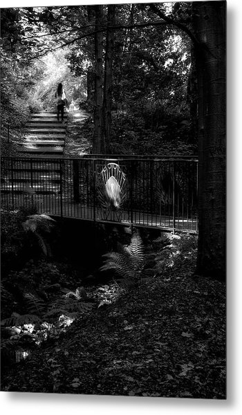 Metal Print featuring the photograph A Woman Walking Her Dog At Pittencrieff Park by Jeremy Lavender Photography