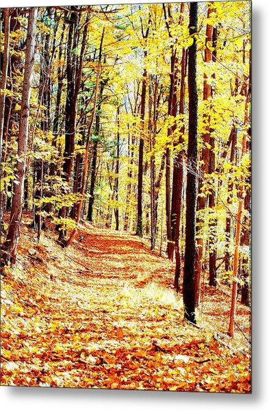 A Yellow Wood Metal Print