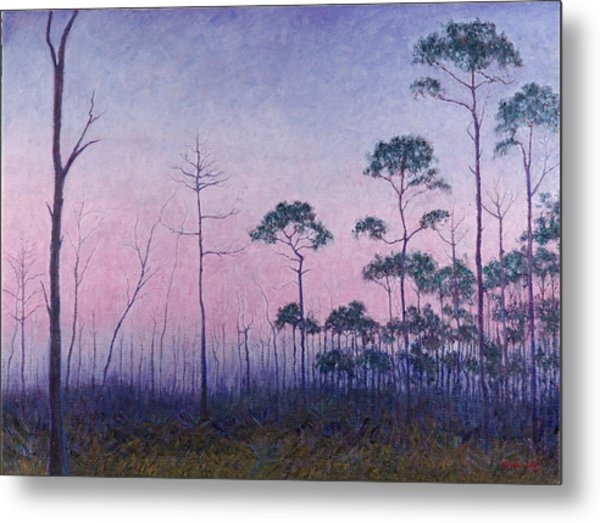 Abaco Pines At Dusk Metal Print