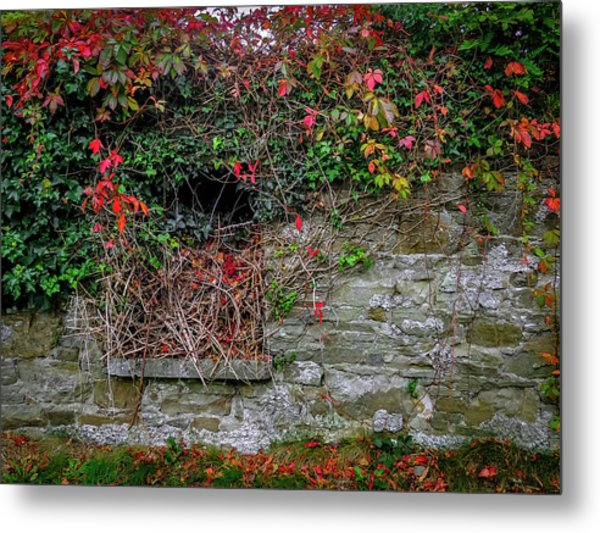 Metal Print featuring the photograph Abandoned Irish Cottage In Autumn by James Truett