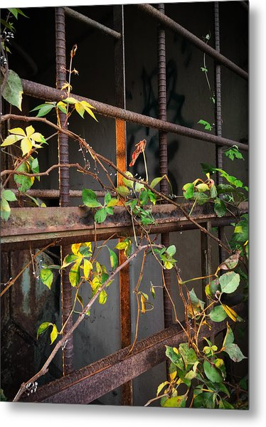 Abandoned Light Metal Print