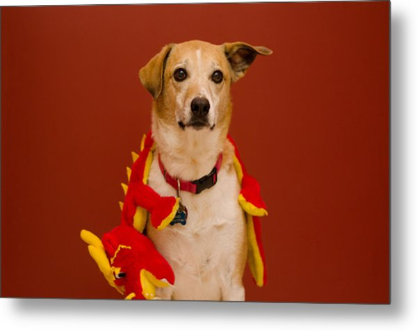 Abbie And Dragon Toy Metal Print
