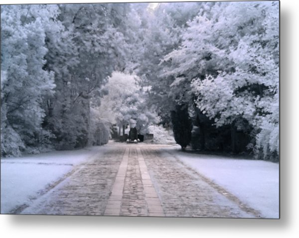 Metal Print featuring the photograph Abney Park Entrance by Helga Novelli