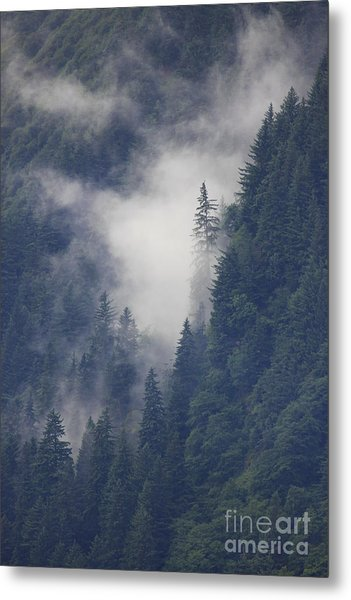 Above Juneau Metal Print by Stan and Anne Foster