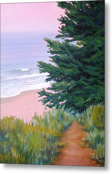Above The Beach El Capitan Metal Print by Dorothy Nalls