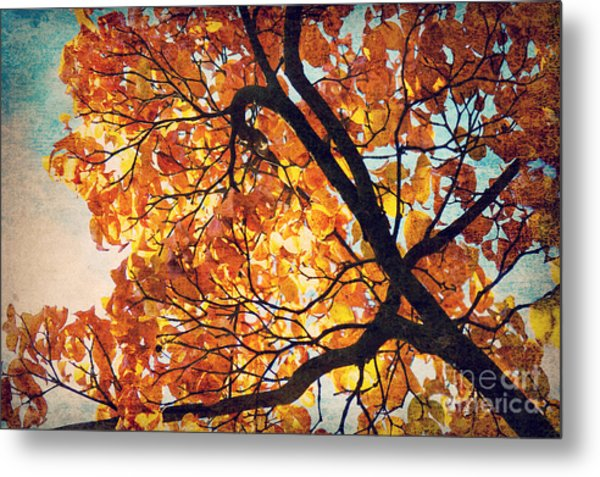 Abstract Autumn Impression Metal Print by Angela Doelling AD DESIGN Photo and PhotoArt