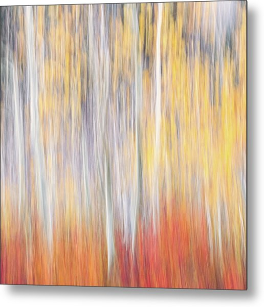 Abstract Autumn Metal Print