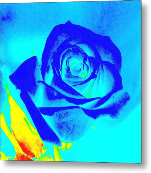 Single Blue Rose Abstract Metal Print