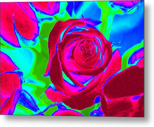 Burgundy Rose Abstract Metal Print