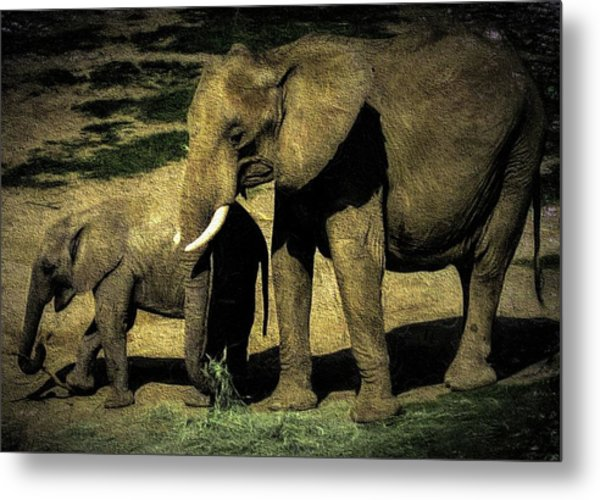 Abstract Elephants 23 Metal Print