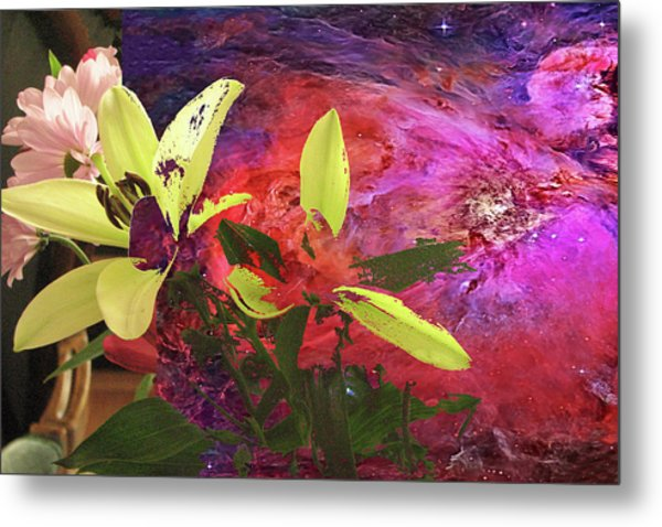 Abstract Flowers Of Light Series #16 Metal Print