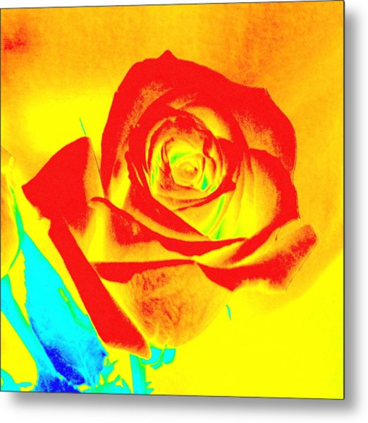 Single Orange Rose Abstract Metal Print