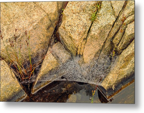 Acadia Granite With Spiderweb And Grasshopper Photo Metal Print