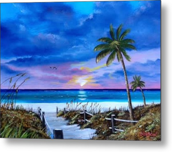 Access To The Beach Metal Print