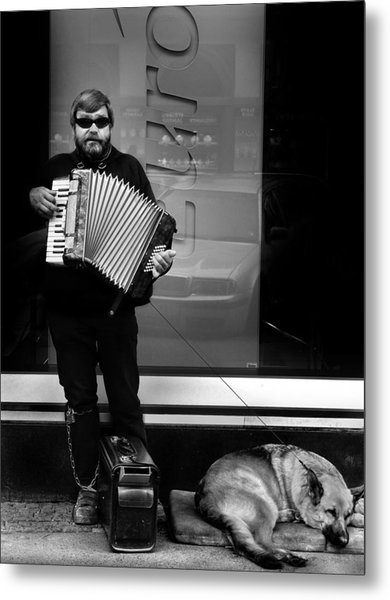 Accordian Player Metal Print by Todd Fox