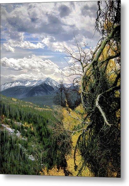 Acorn Creek Trail Metal Print
