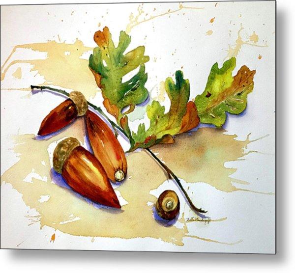 Acorns And Leaves Metal Print