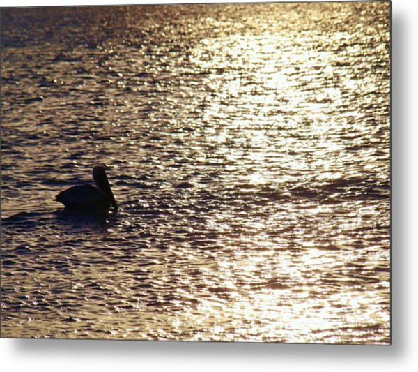 Across The Amber Glow Metal Print