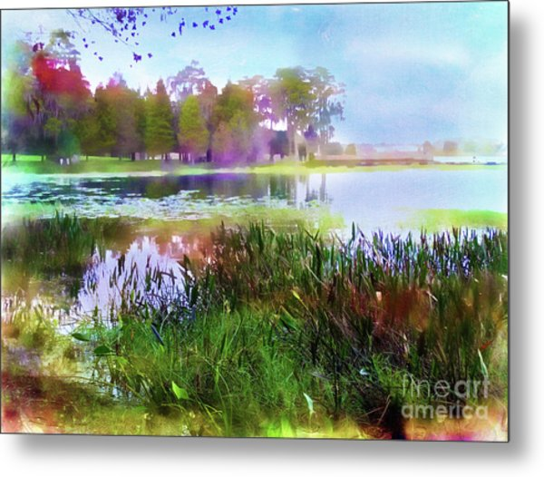 Across The Pond Metal Print