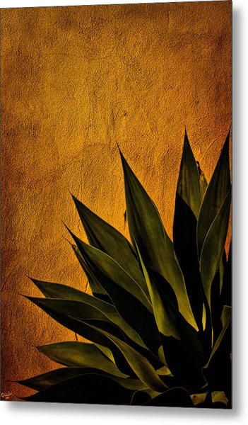 Adobe And Agave At Sundown Metal Print