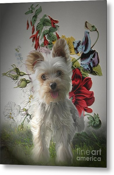 Adorable Yorkie And Rose Photo Painting Metal Print