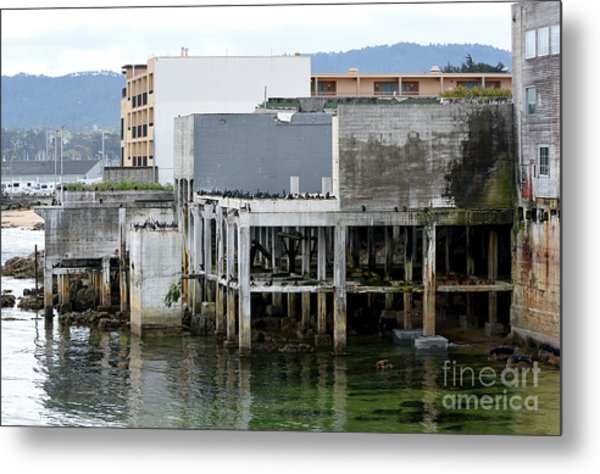 Aeneas Ruins In Springtime At Cannery Row Metal Print