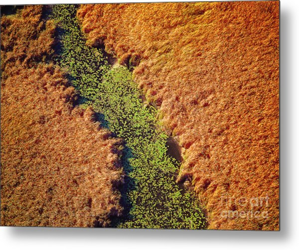 Aerial Farm Stream Lillies  Metal Print