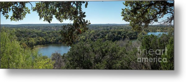 Aerial View Of Large Forest And Lake Metal Print