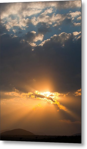 African Sunset Metal Print by Paco Feria