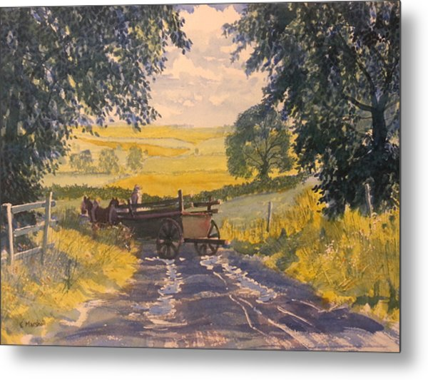 After Rain On The Wolds Way Metal Print