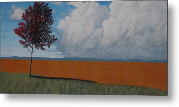 After The Harvest Metal Print by Candace Shockley
