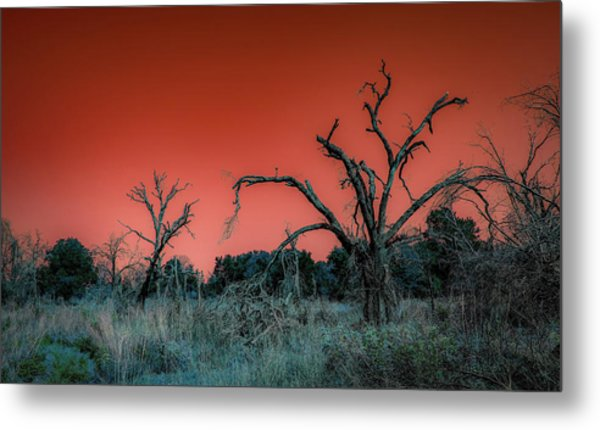 After The Hurricane Wars Metal Print