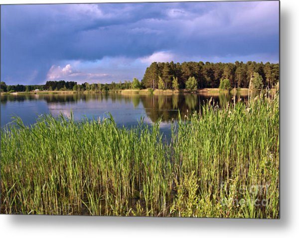 After The Rain Poetry Metal Print