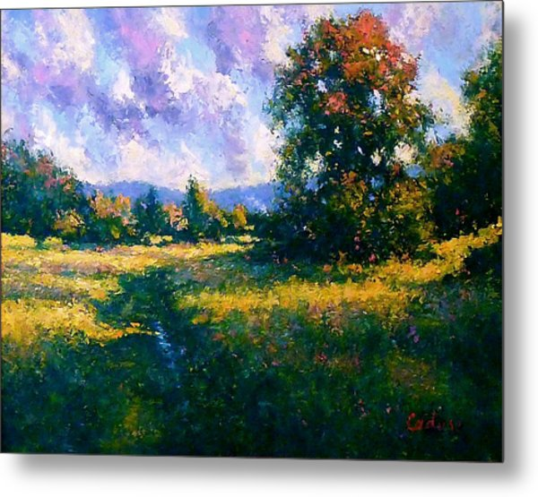 Afternoon In Dutchess County Metal Print by Gene Cadore