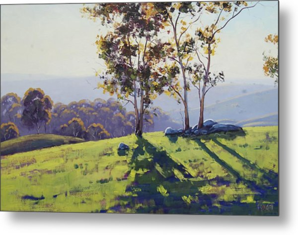 Afternoon Light Cuthill Road Metal Print