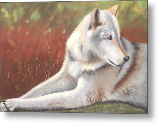 Afternoon Repose Metal Print by Janet Biondi