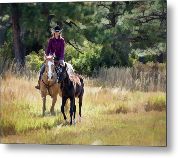 Afternoon Ride In The Sun - Cowgirl Riding Palomino Horse With Foal Metal Print