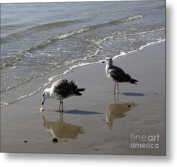 Afternoon Snack Metal Print