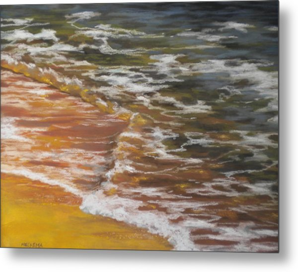 Afternoon Swim Metal Print by Cheri Halsema