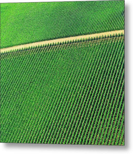 Ag Road Metal Print