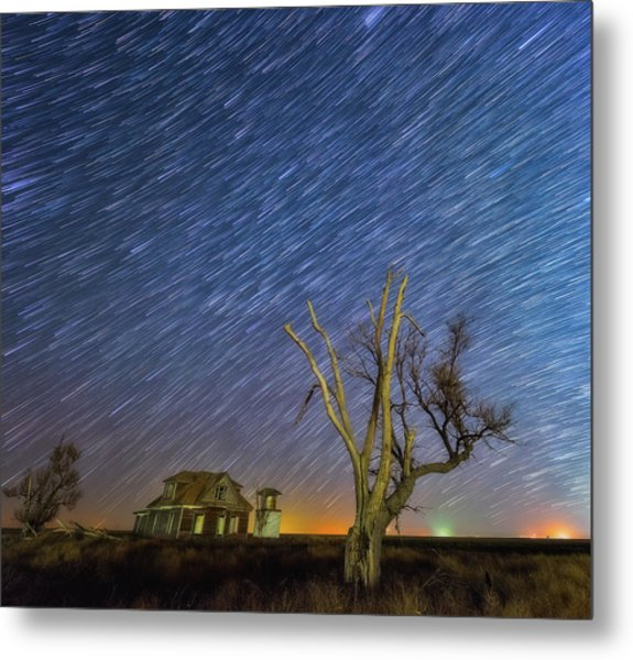 Metal Print featuring the photograph Against All Odds by Darren White