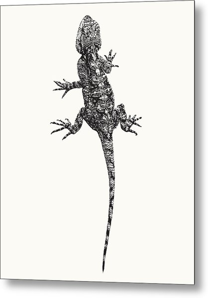 Agama Lizard In Graphic Monochrome Metal Print