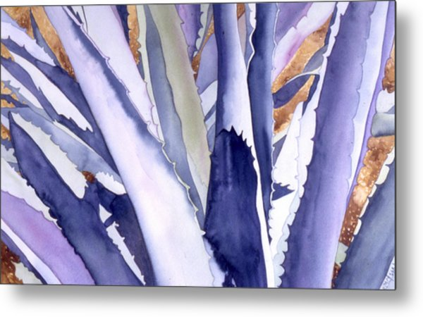 Agave 4 Metal Print by Eunice Olson
